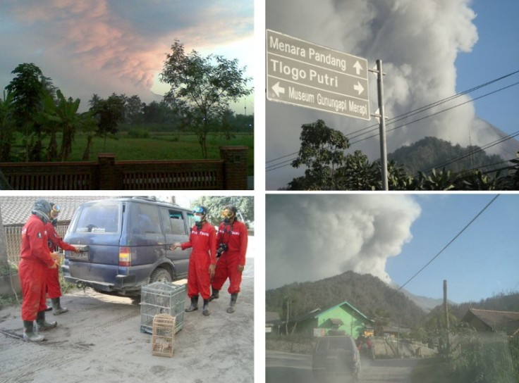 Medan Merapi Pro Fauna