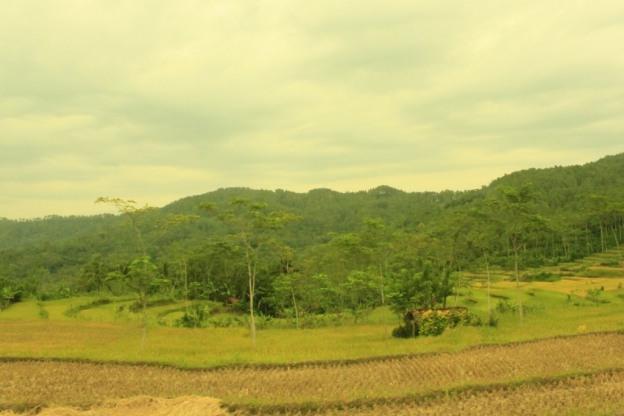 panorama desa dermaji banyumas